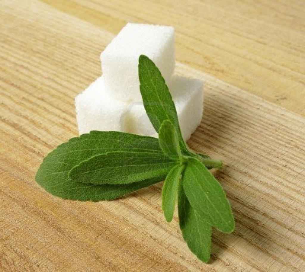 Stevia - Natural Sweetner 300 times sweeter than sugar