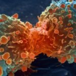 Cancer is Pure Strike of Bad Luck Studies Suggest