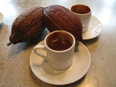 Cocoa or Chocolate Rich Diet May Improve Memory