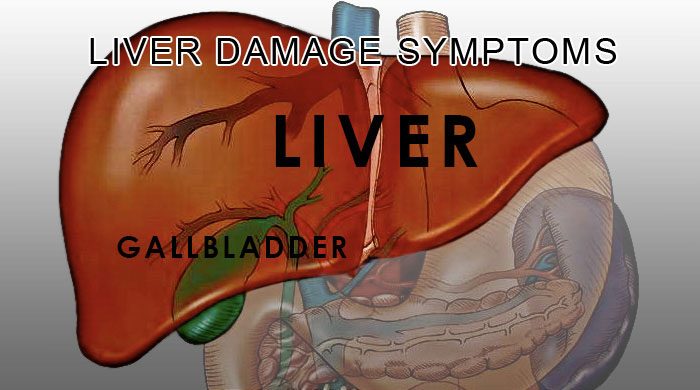 10 Signs and Symptoms of Having Damaged Liver