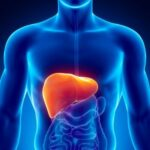 Causes and Symptoms of Liver Working too Hard