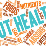 Gut Feeling – How the Intestines Affect the Whole Body